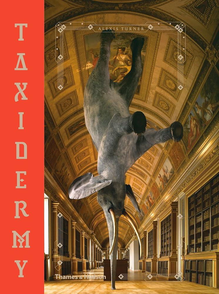 Alexis Turner Book
