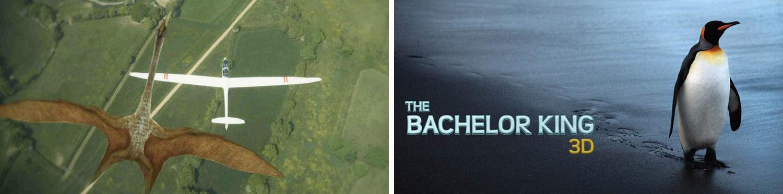 Flying Monsters - Batchelor King