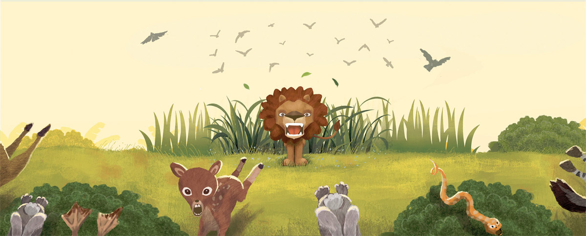 Lion Fawn Storybook