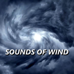 Pure Dawn Wind Sounds
