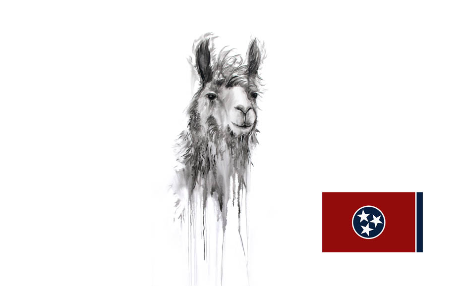 Kristin Llamas Interview – 50 States (Tennessee)